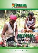 plantando e colhendo frutos